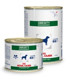 Royal Canin Obesity Management 12 x 410 g Dosen Hund